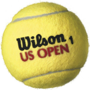 Wilson US Open Regular Duty Tennis Balls